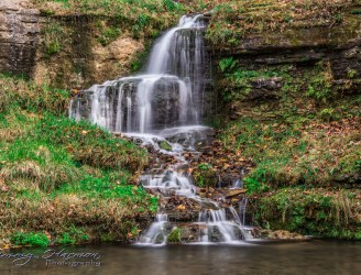 nature photography Nature Photography – Dogwood Canyon Dogwood Canyon 28
