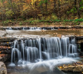 nature photography Nature Photography – Dogwood Canyon Dogwood Canyon 3