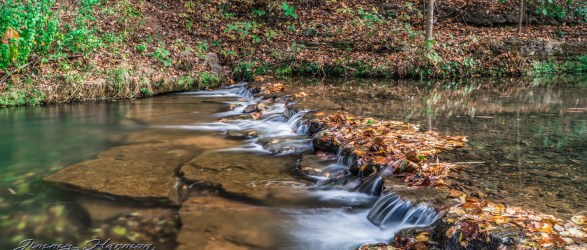 nature photography Nature Photography – Dogwood Canyon Dogwood Canyon 8