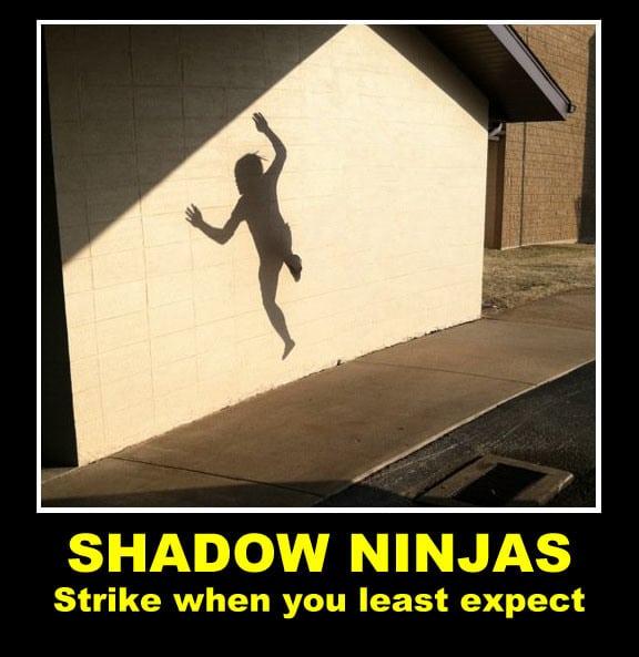 shadow-ninjas