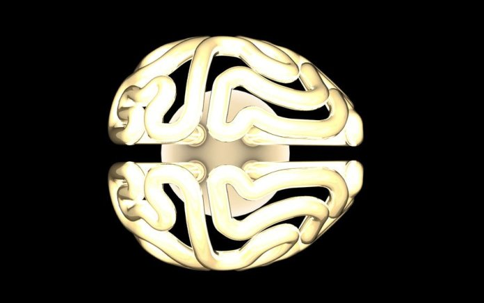 brain-cfl-solovyovdesign-4