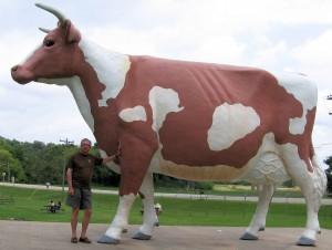 Gertrude the Gurnsey Cow