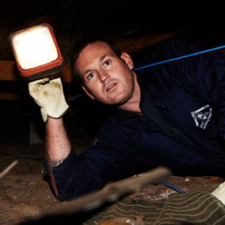 Jims-building-and-pest-inspections-on-job-flash-light