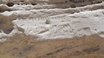 Some inscriptions in the rock