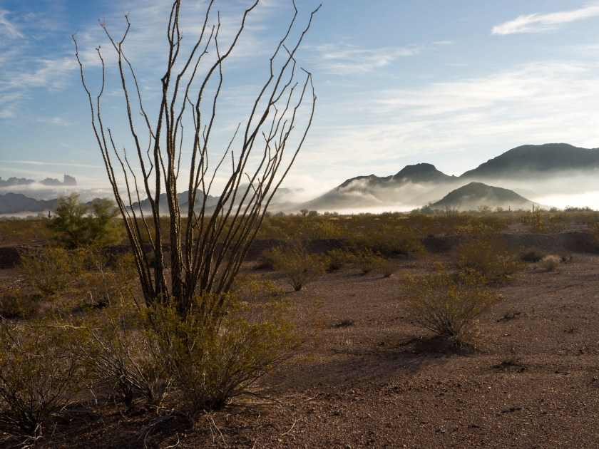 Ground Fog and KOFA Range