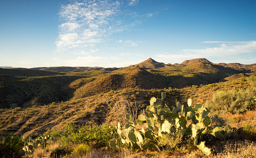 Prickly Pear and Bagdad Hills