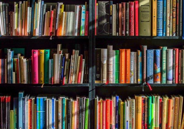 本棚に敷き詰められた本