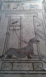 Mozaika na podlaze domu ve městě Pompeje pohřbeném sopečným popelem sopky Vesuv