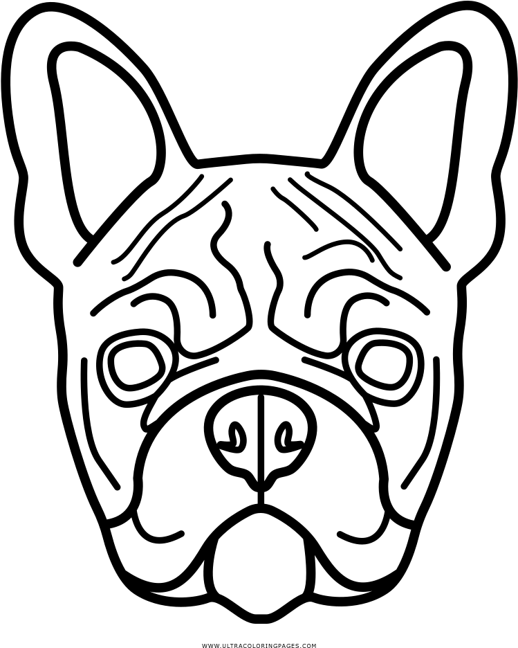 Explore Popular Coloring Pages French Bulldog Colouring Pages Transparent Cartoon Jing Fm