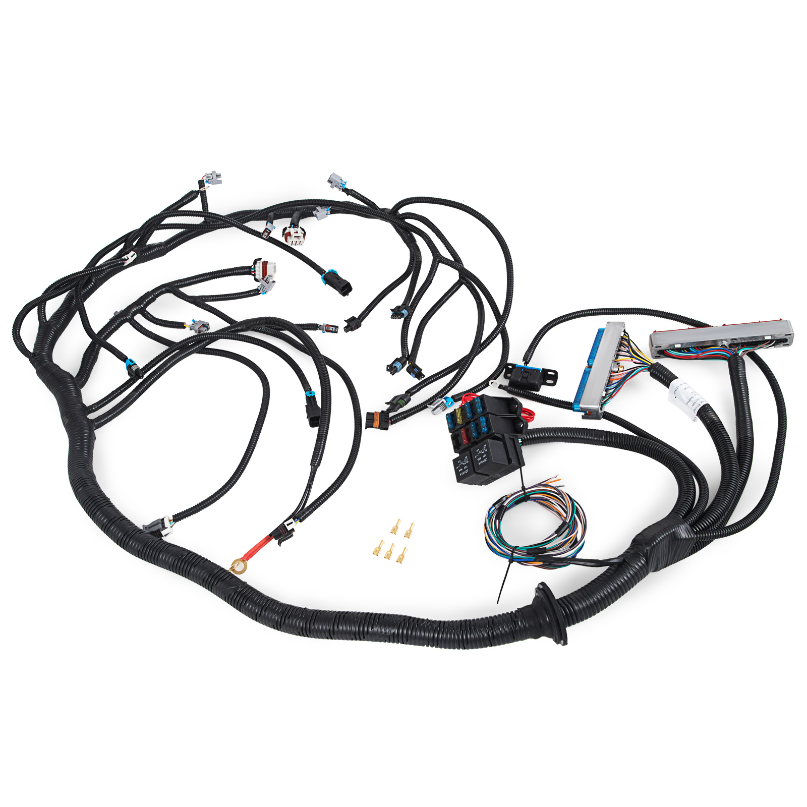 Nice 1999-2003 DBC LS1 Standalone Wiring Harness With T56