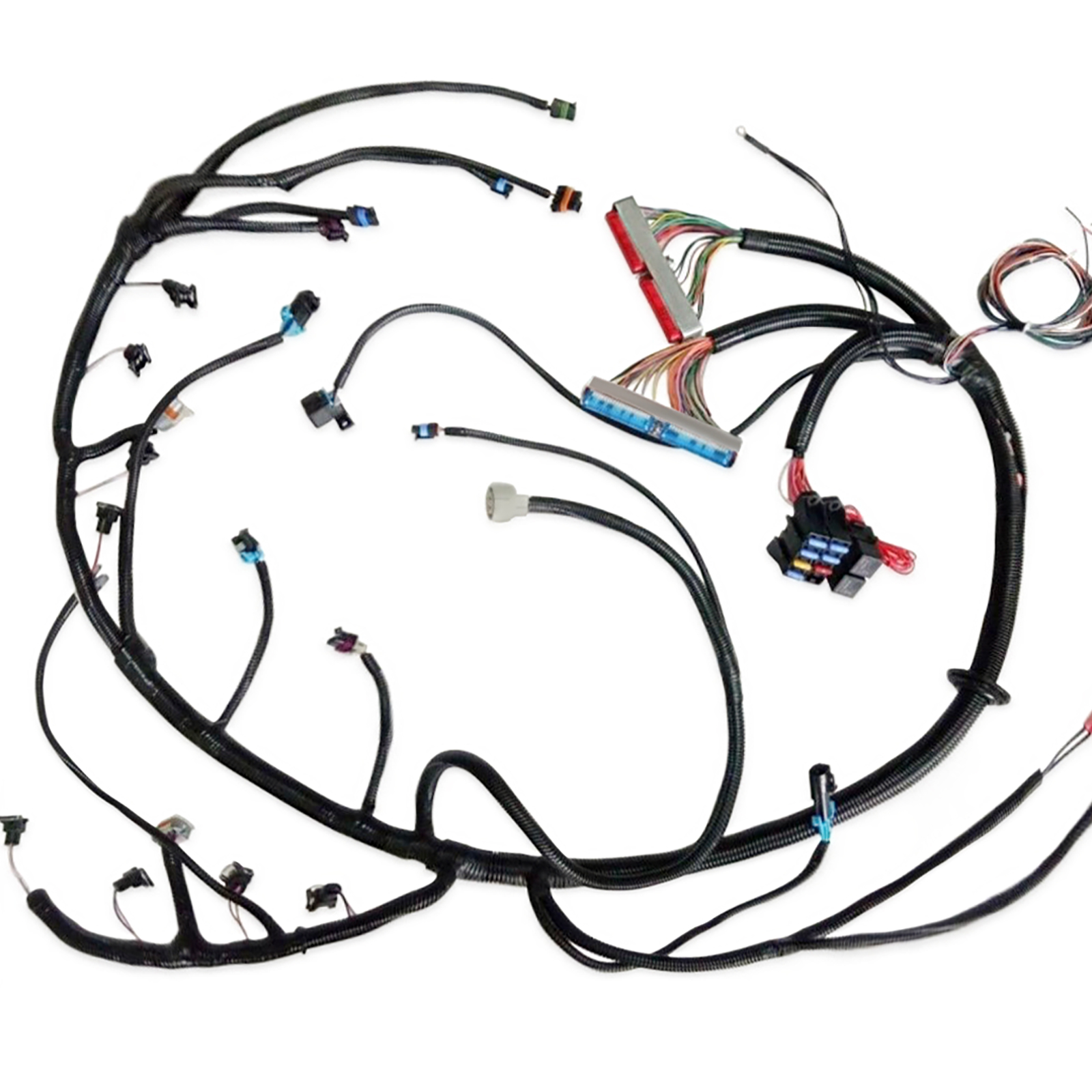 97-02 LS1 Standalone Wiring Harness With T56 or w/4L60E