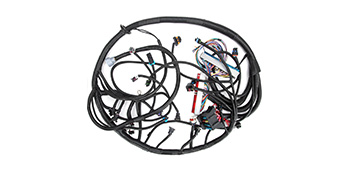 Standalone Wiring Harness For 97-02 DBC LS1 T56 or Non