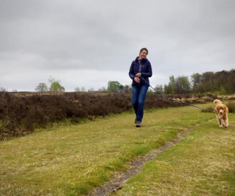 Wandelen in Drenthe, wat is het hier mooi!