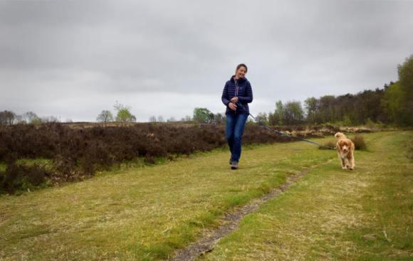 Wandelen in Drenthe.