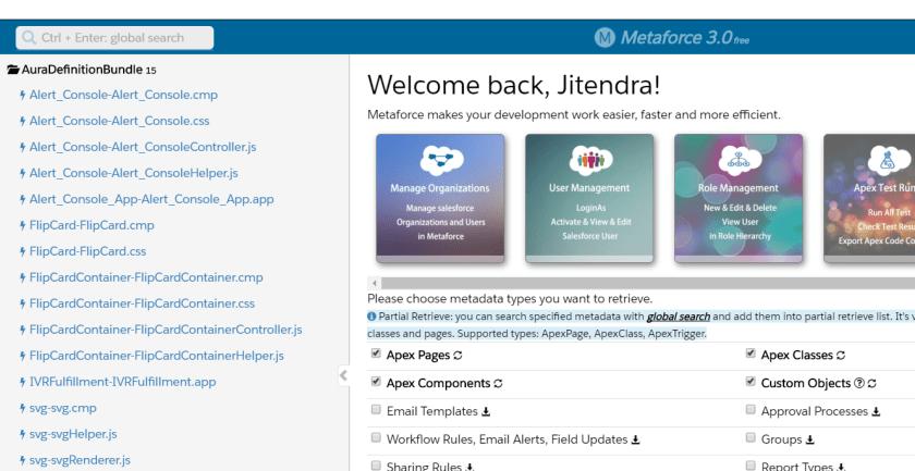Metaforce IDE
