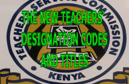 The new TSC designation codes, scales and titles for teachers