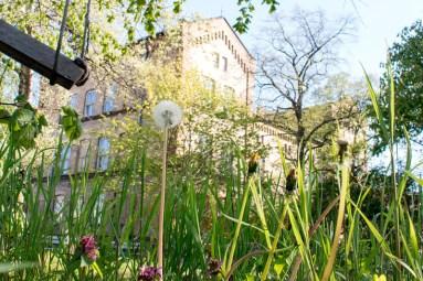VorOrt-Garten