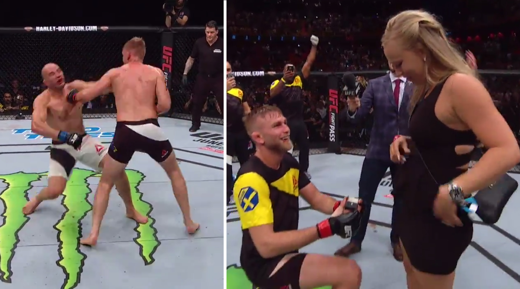 Gustafsson vs Teixeira at UFC Stockholm
