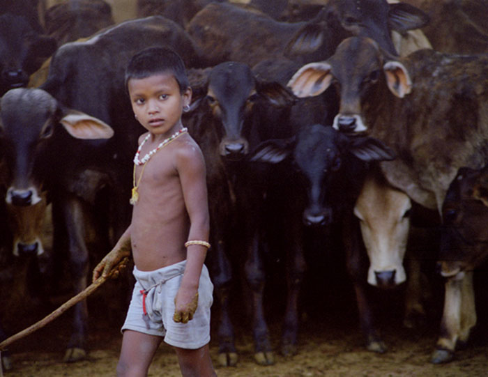 Cowherd boy in Vraja