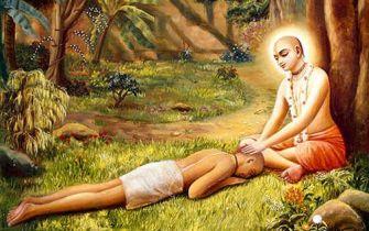 Sri Chaitanya and Sanatana_Collection by Priya_krishna-art-consciousness