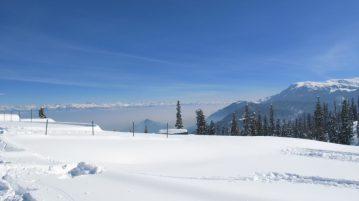 Gulmarg - Kashmir