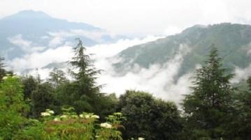 Chail Hill - Himachal Pradesh