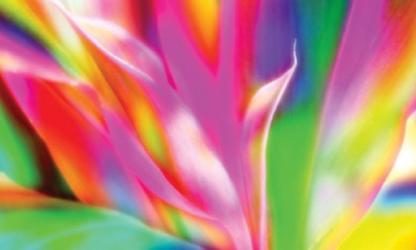 10 relaxing colors and how they affect your life