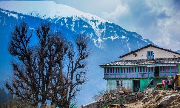 Nakthan_Village,_Himachal_Pradesh