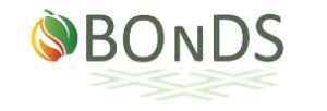 BOnDS-logo klein