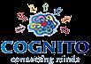 Partner Cognito Concepts