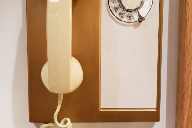 AE Type 95 Rotary Panel Phone
