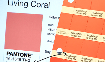 Pantone Color Matching Living Coral