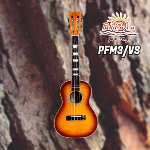 PFM3/VS