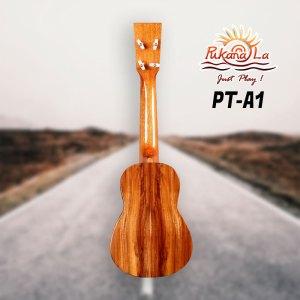 PT-A1