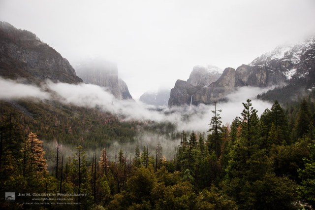 Fog Rises Above Yosemite Valley