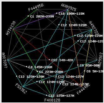 Richard Traceability Sphere