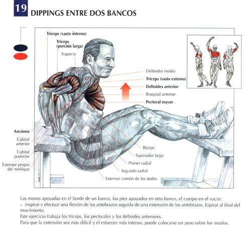 Tríceps fondo