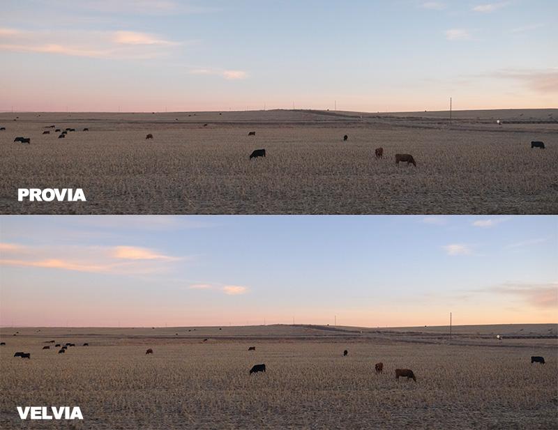 Fujifilm Film Simulations: More Than A Marketing Gimmick