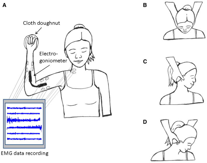 Subclinical Neck Pain and the Effects of Cervical