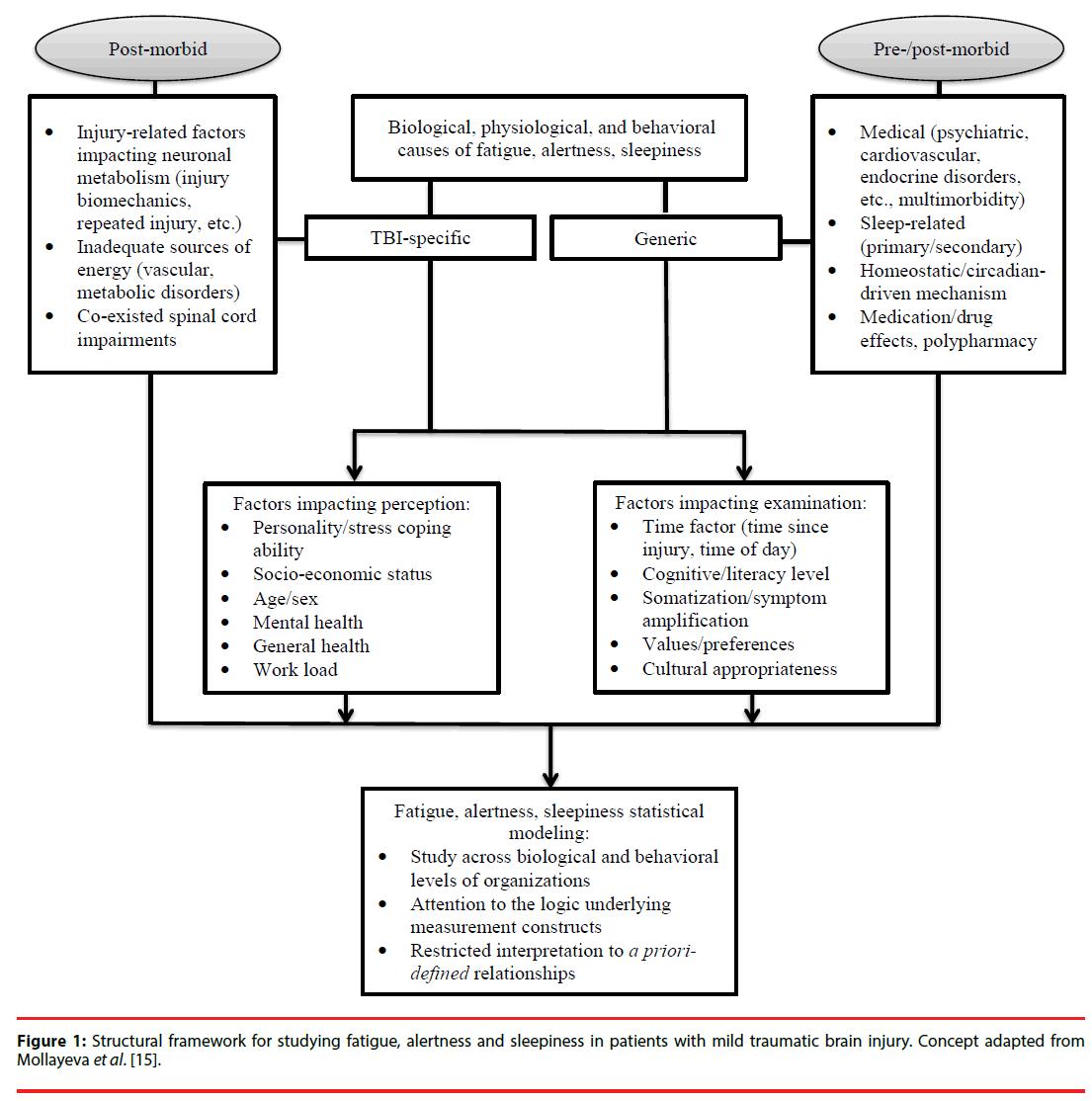 hight resolution of neuropsychiatry brain injury