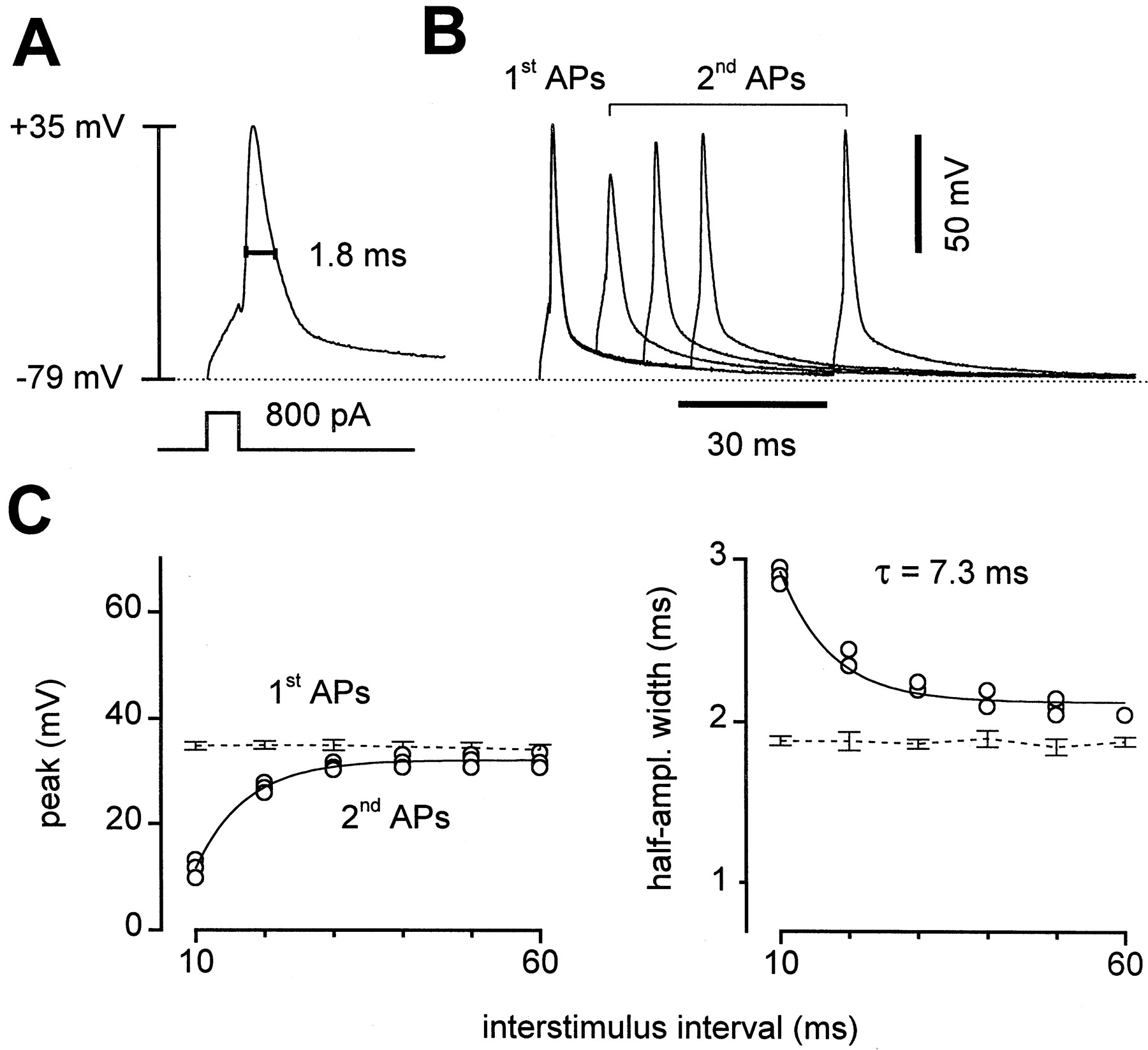 Release-Independent Short-Term Synaptic Depression in