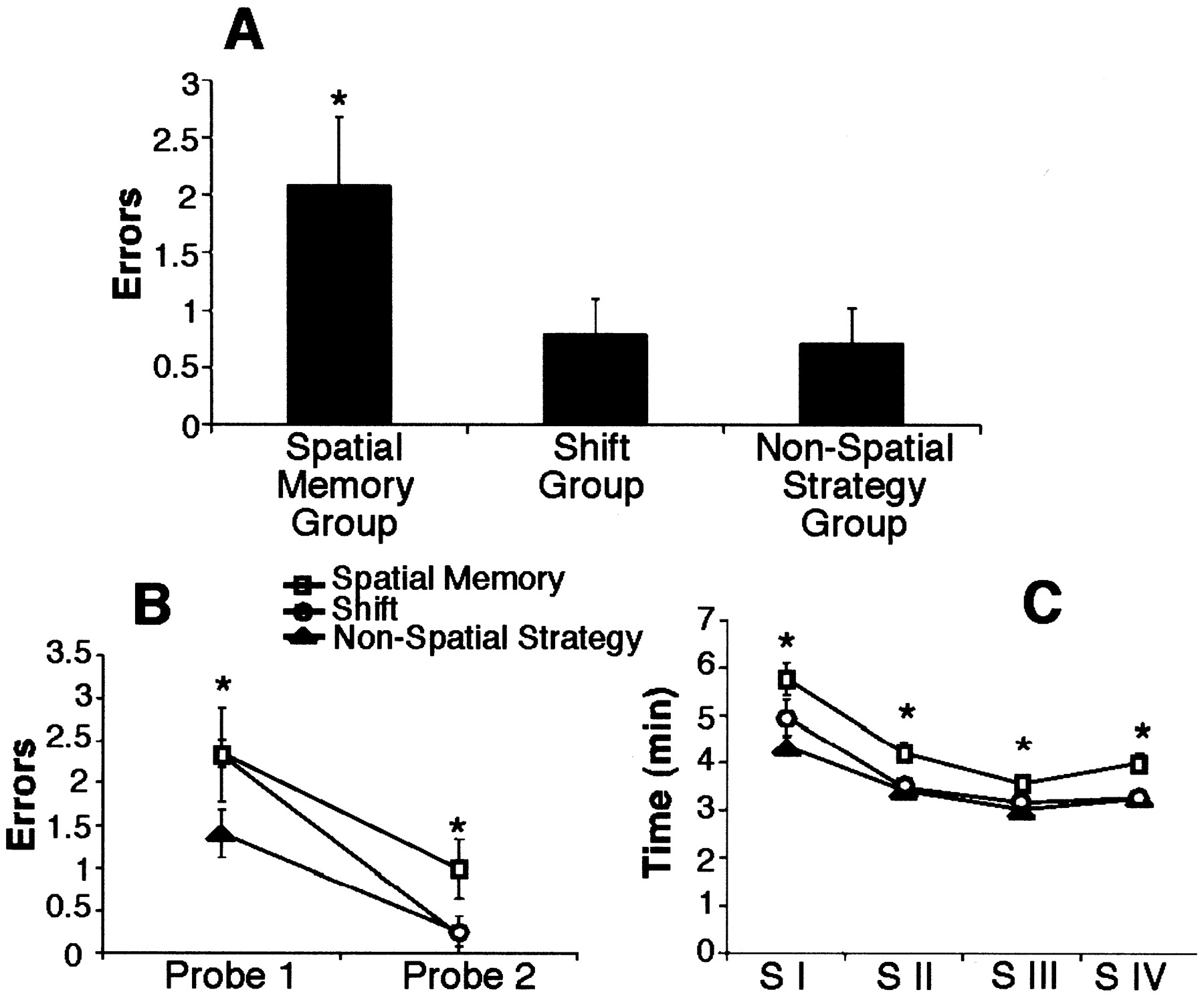 Cognitive Strategies Dependent on the Hippocampus and