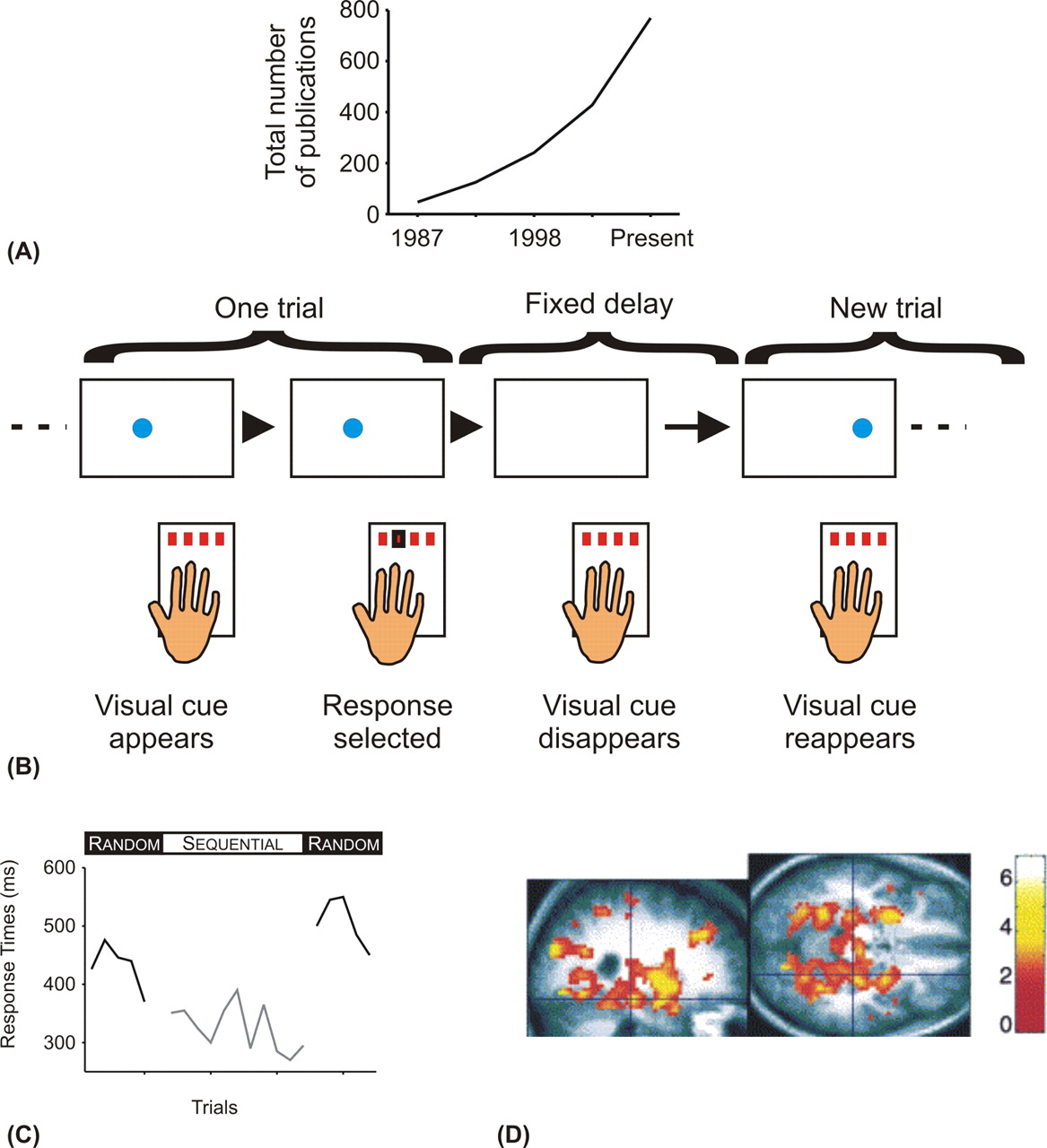 The Serial Reaction Time Task Implicit Motor Skill Learning