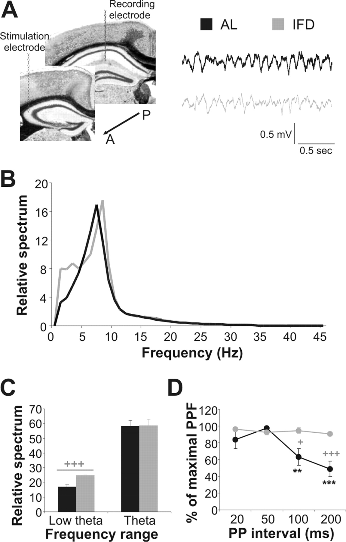 Caloric Restriction Increases Learning Consolidation and