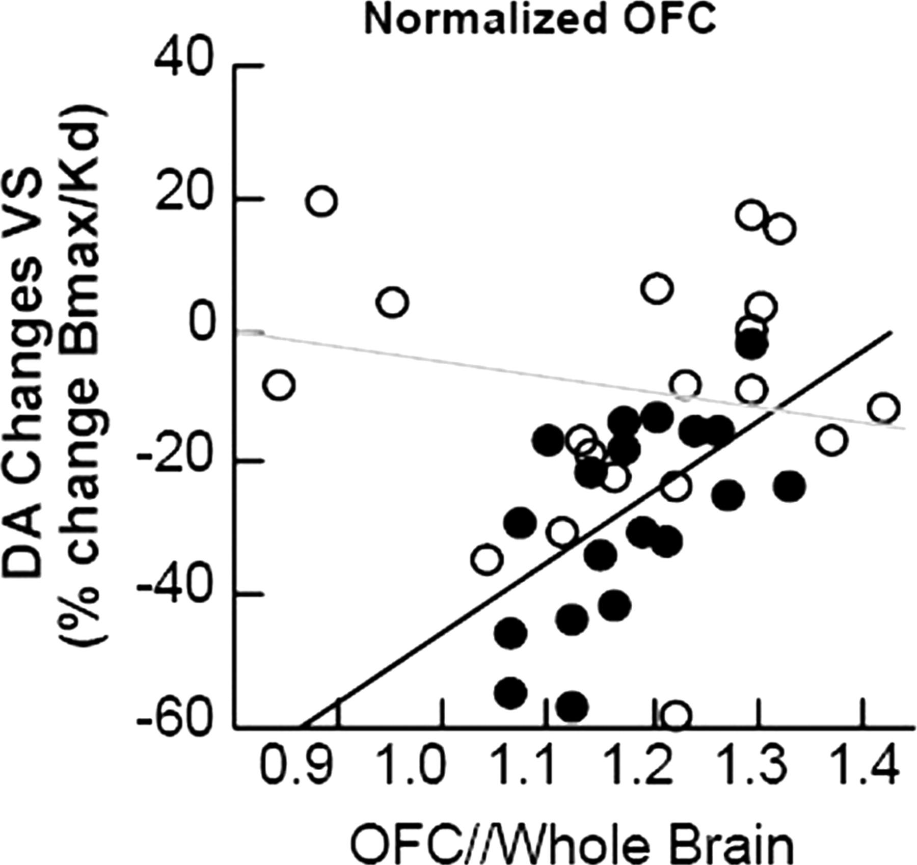 Profound Decreases in Dopamine Release in Striatum in