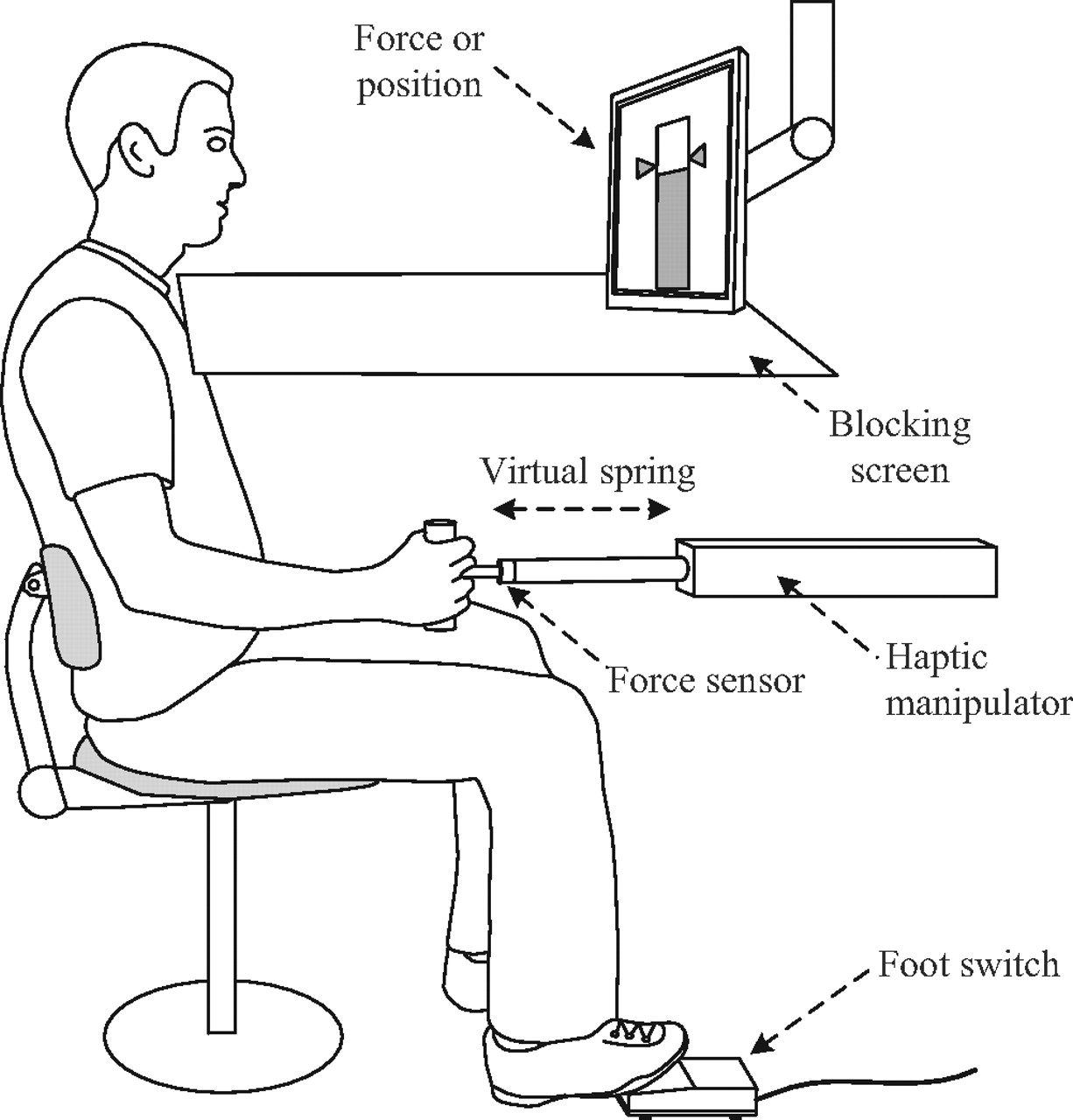 Sensory Weighting Of Force And Position Feedback In Human