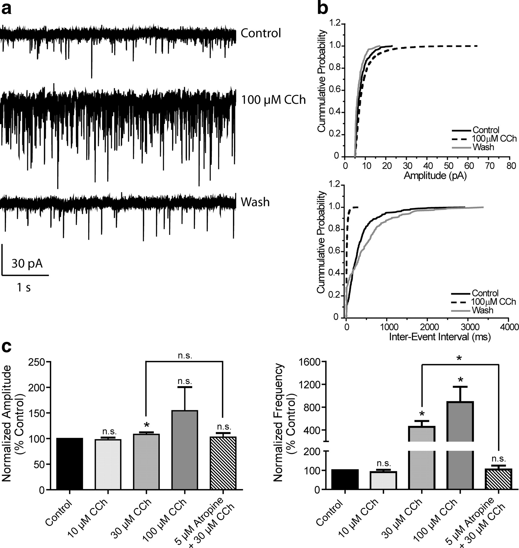 A Selective Allosteric Potentiator Of The M1 Muscarinic Acetylcholine Receptor Increases