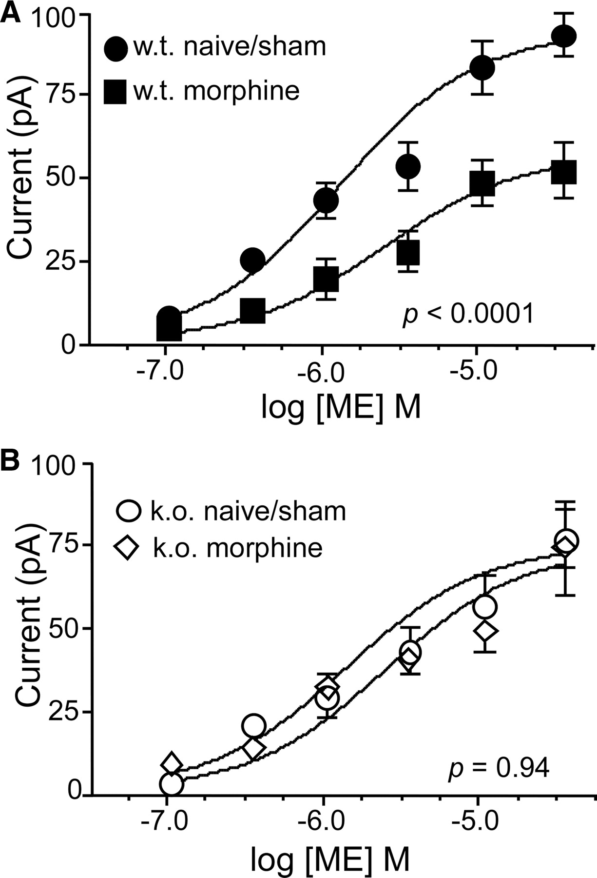 Cellular Morphine Tolerance Produced by βArrestin-2