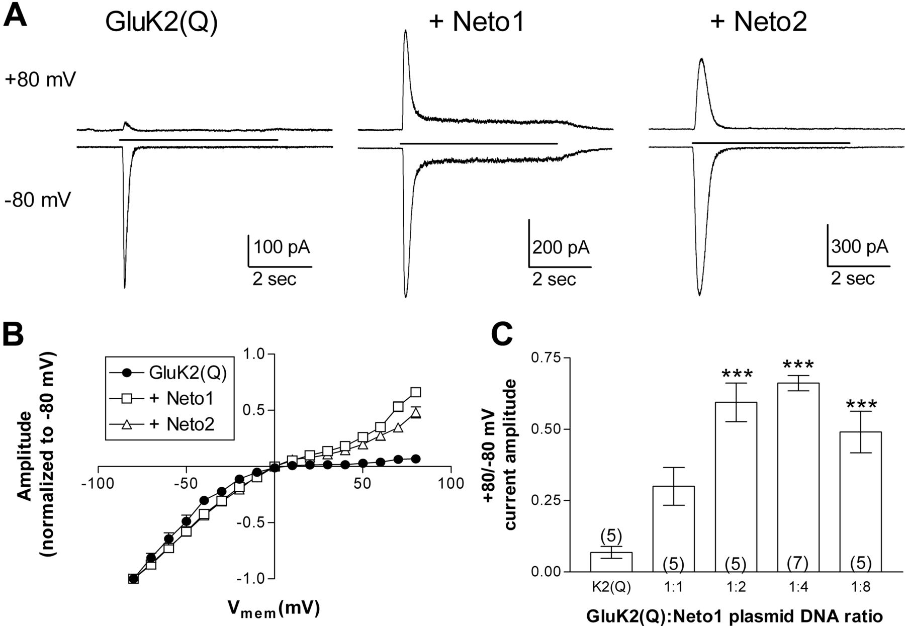 The Auxiliary Subunits Neto1 And Neto2 Reduce Voltage Dependent Inhibition Of Recombinant