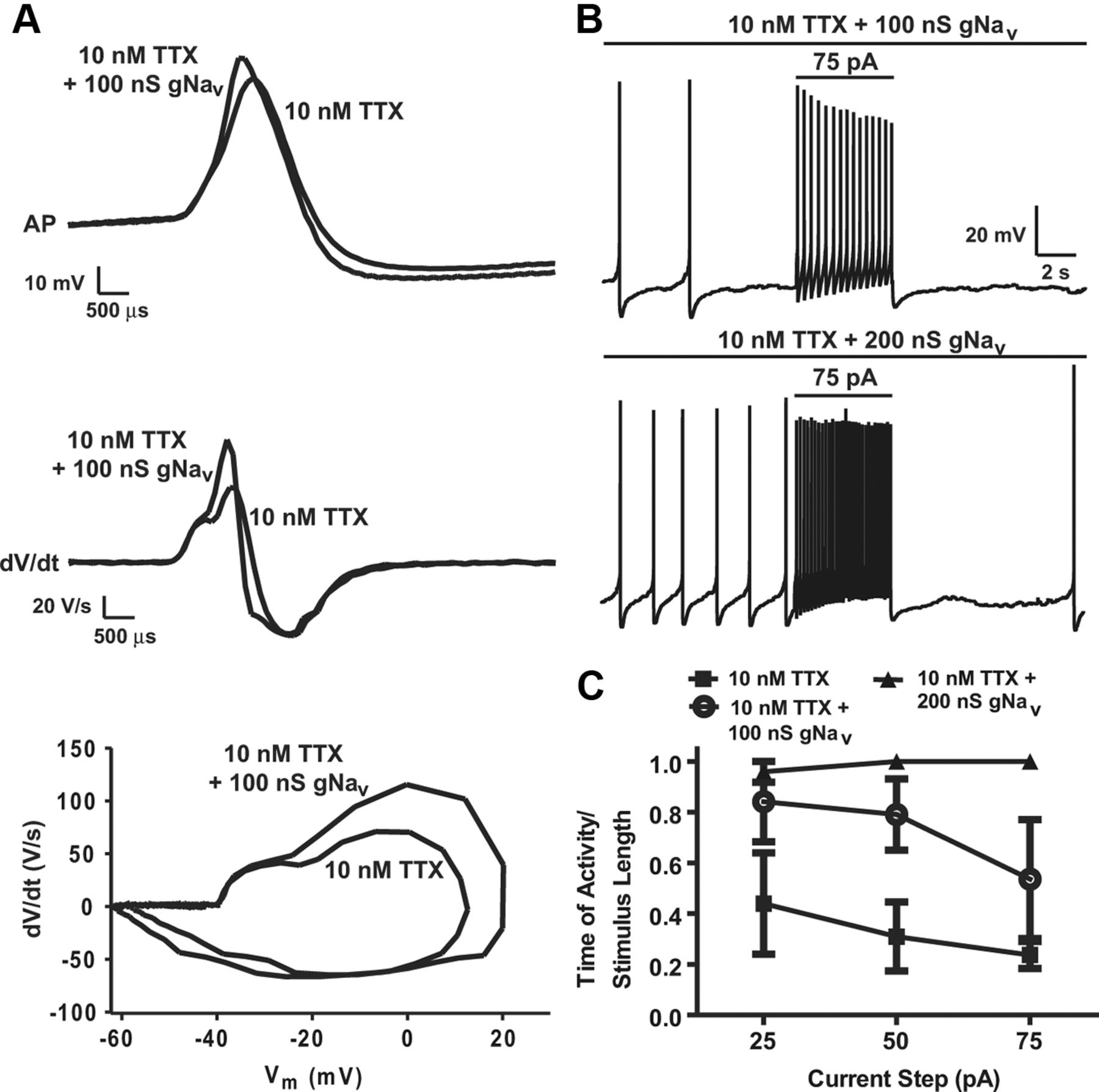 Pacemaker Rate and Depolarization Block in Nigral Dopamine